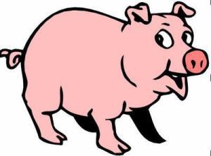 pig-thumb1